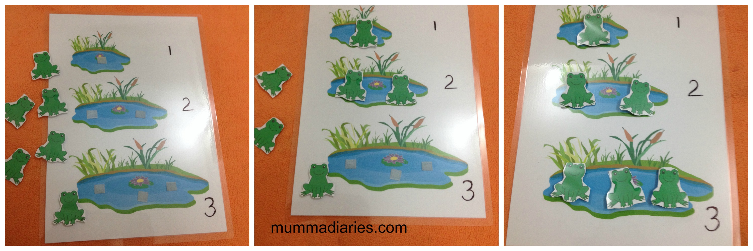 ... color printed and laminated the sheets. The frogs are laminated as